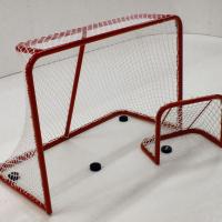 Eishockeytor-3